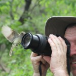 Wildlife viewing in the Galapagos Galapagos Flagcatcher. Up close and personal. -Mike, Washington