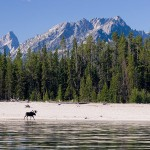 Grand Teton National Park Highway 26/89/191 from Grand Teton's south boundary to the east boundary will remain open for through traffic, but signs at roadside pullouts warn visitors that recreation of any kind is not allowed. Photo: James Kaiser