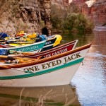 A fleet of dories rests in the calm waters of an eddy on the Colorado River. Photo: Monty Pollack